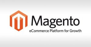 10 Signs, You Should, Invest In, Magento